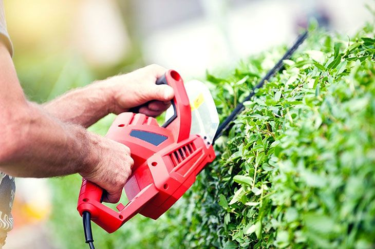 best electric hedge trimmer amazon
