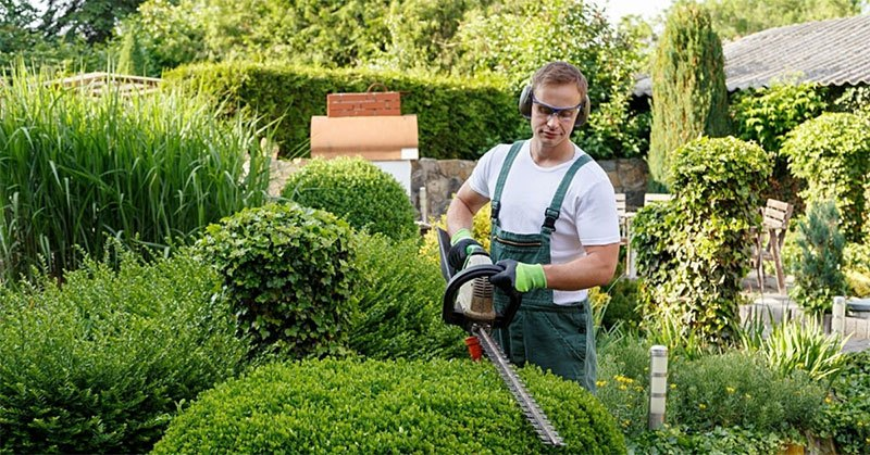 Best Electric Hedge Trimmer For Fast And Convenient Gardening Tasks!